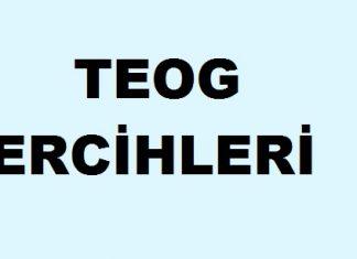 2017 TEOG Tercihleri