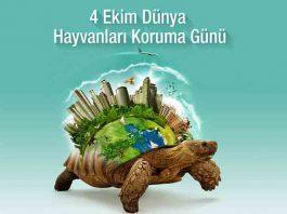 4 ekim hayvanları koruma günü şiirleri