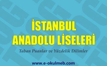 istanbuldaki anadolu liseleri