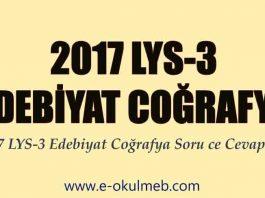 2017 lys-3 edebiyat coğrafya soru ve cevapları