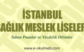 istanbul sağlık meslek liseleri