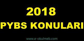 2018 PYBS konuları