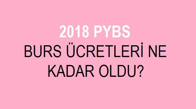 2018 pybs burs ücreti kaç tl, 2018 pybs kaç tl burs yatacak